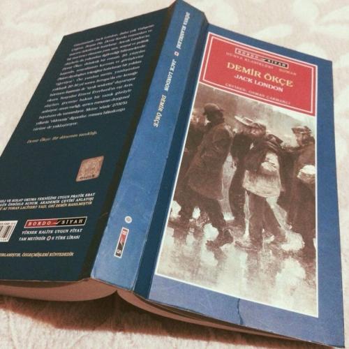 Demir Ökçe - Kitap Alıntıları
