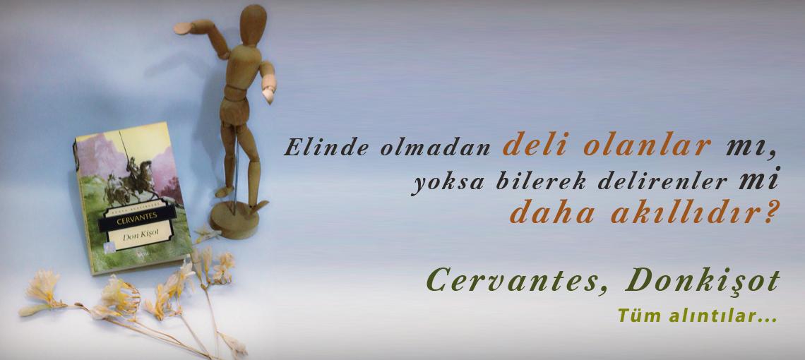 Donkişot, Cervantes