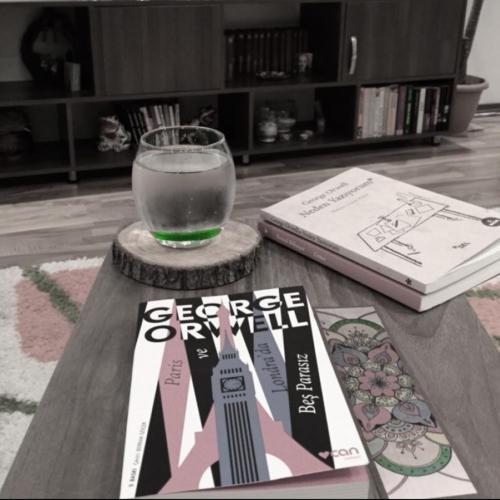 George Orwell, Paris ve Londra'da Beş Parasız