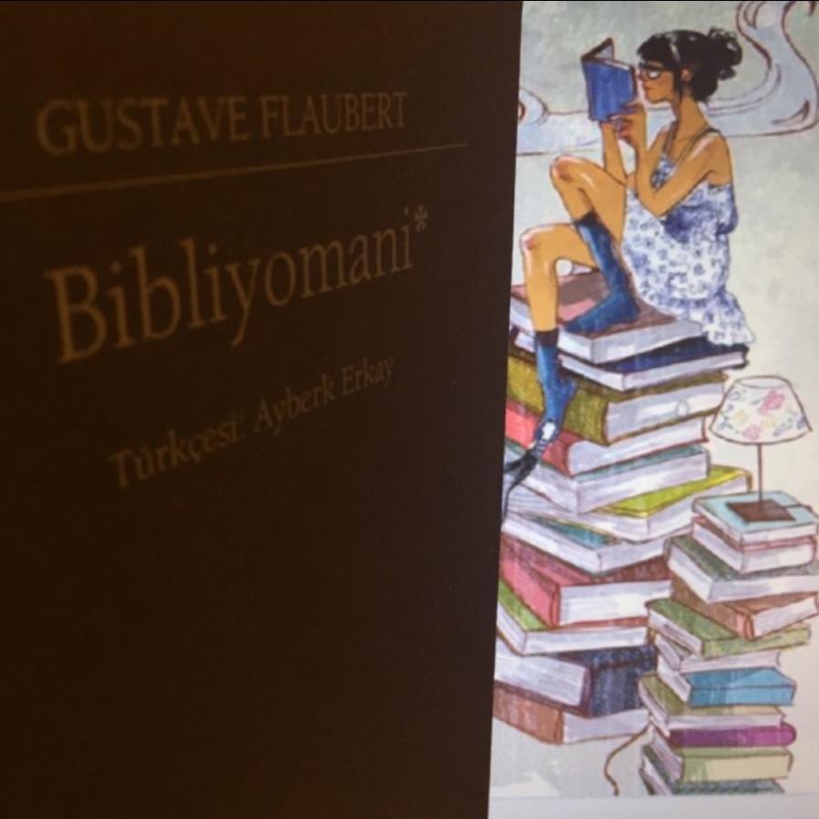 Gustave Flaubert'in kaleminden Bibliyomani