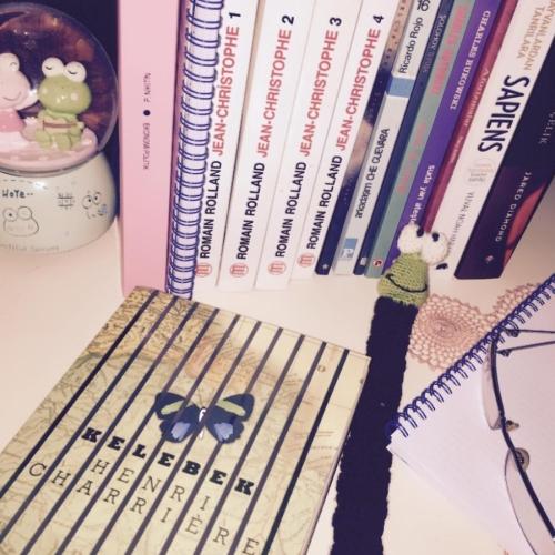 Henri Charriere - Kelebek Kitap Alıntıları
