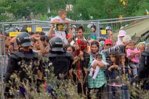 Uluslararası Göç Filmleri Festivali'nde Bir Haftada Yaklaşık 30 Milyon İzleyici