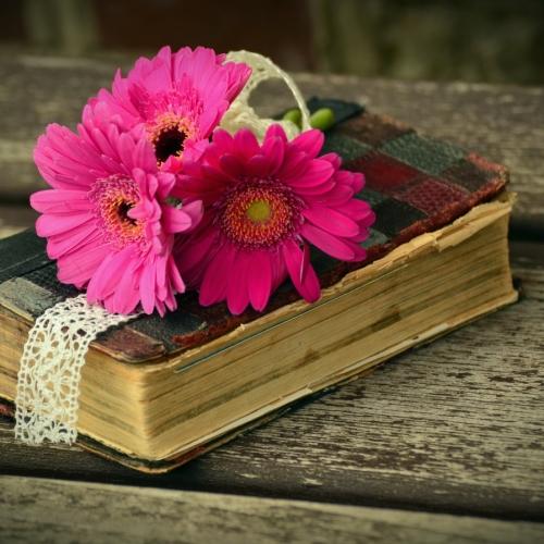 Kitaplar ile ilgili ünlü sözler