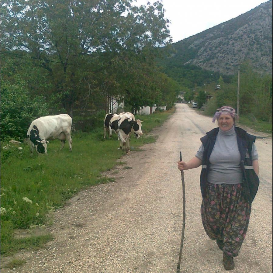 Köylüyüm ama ineklerim bile kültürlü